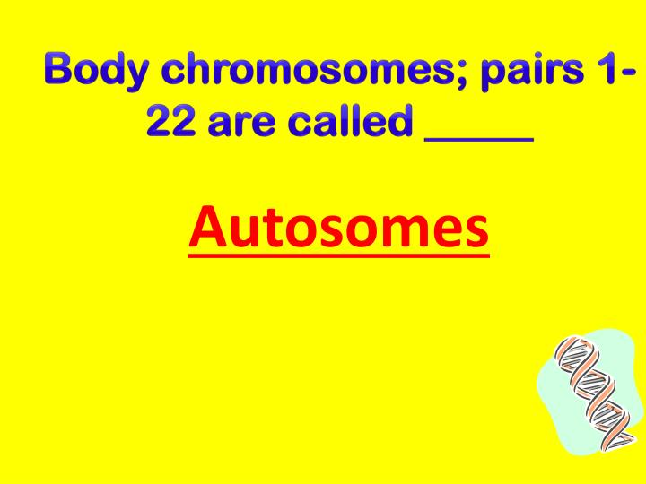 Body chromosomes; pairs 1-22 are called _____