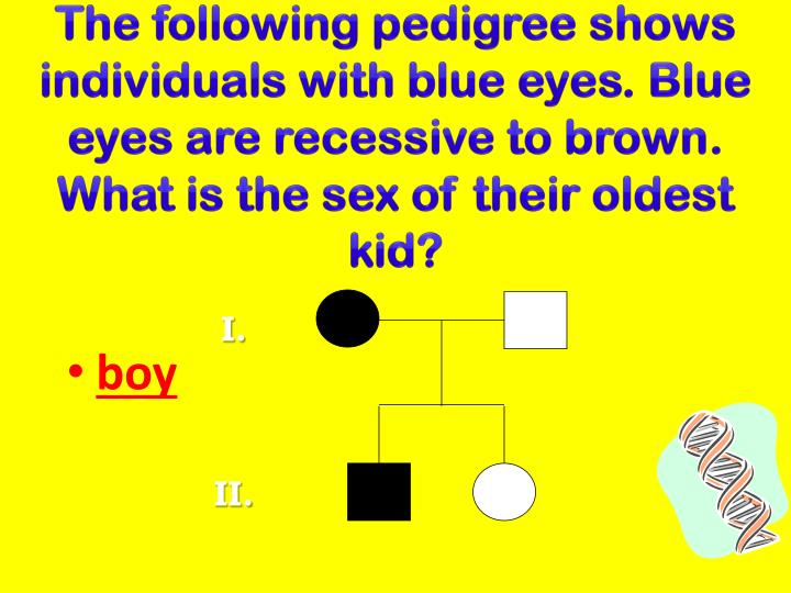 The following pedigree shows individuals with blue eyes. Blue eyes are recessive to brown. What is the sex of their oldest kid?
