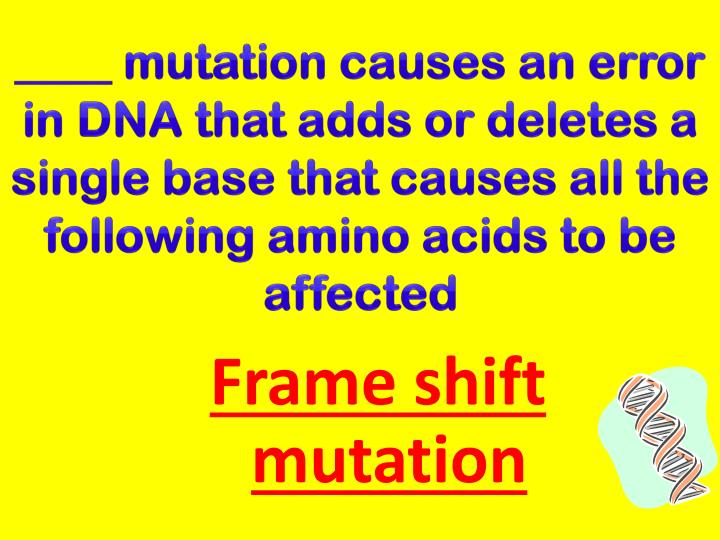 ____ mutation causes an error in DNA that adds or deletes a single base that causes all the following amino acids to be affected