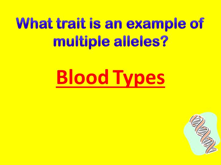 What trait is an example of multiple alleles?