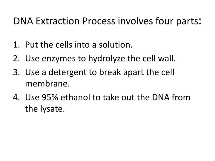 Dna extraction process involves four parts