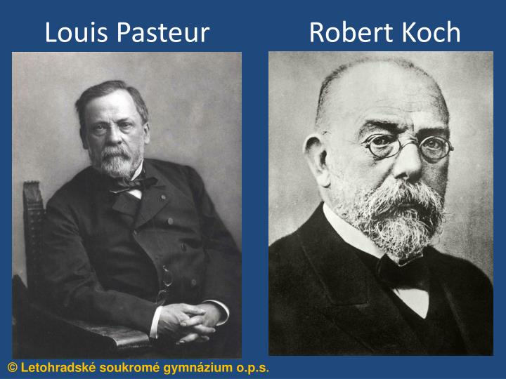 robert koch and louis pasteur Knowledge about disease louis pasteur, french microbiologist and the 'father' of the germ theory of disease robert koch (germany.