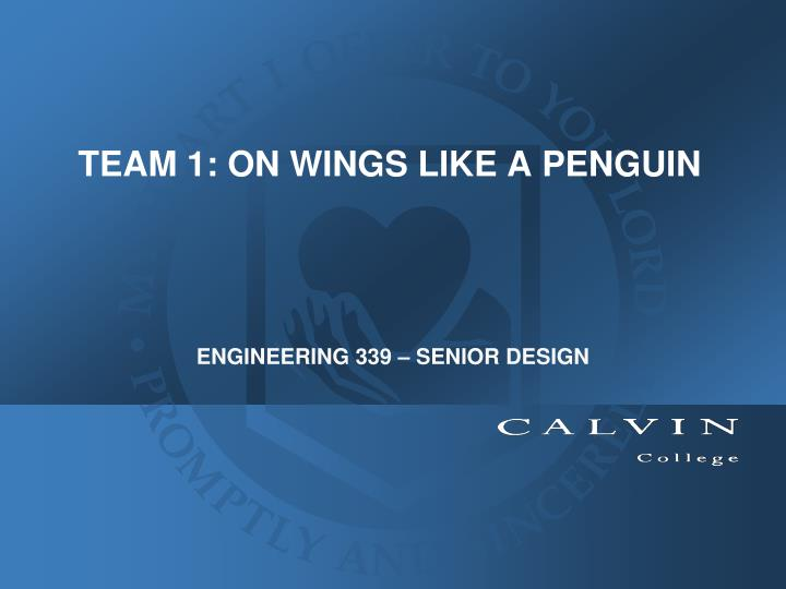 Team 1 on wings like a penguin