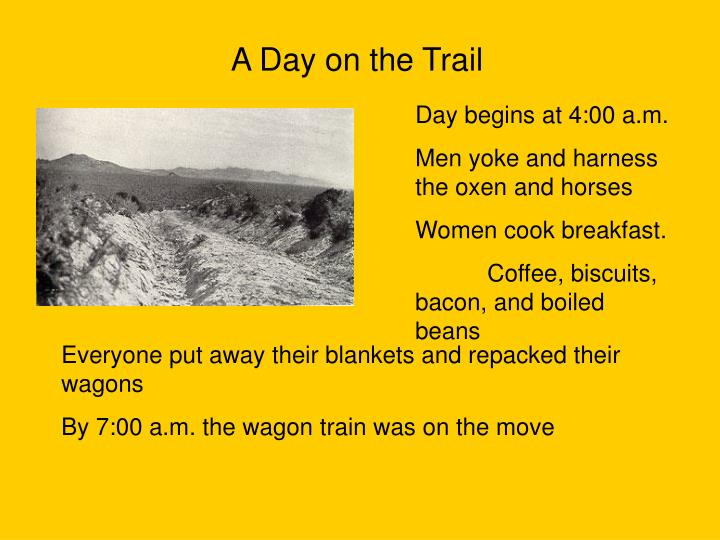 A Day on the Trail