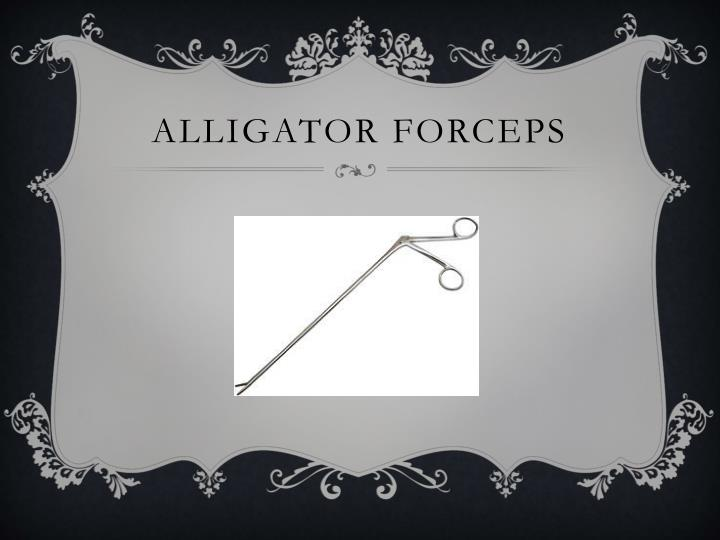 Alligator forceps