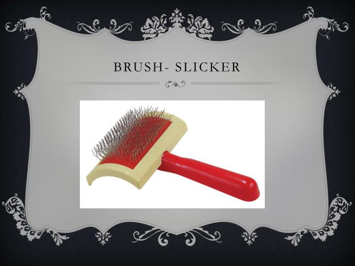 Brush- Slicker