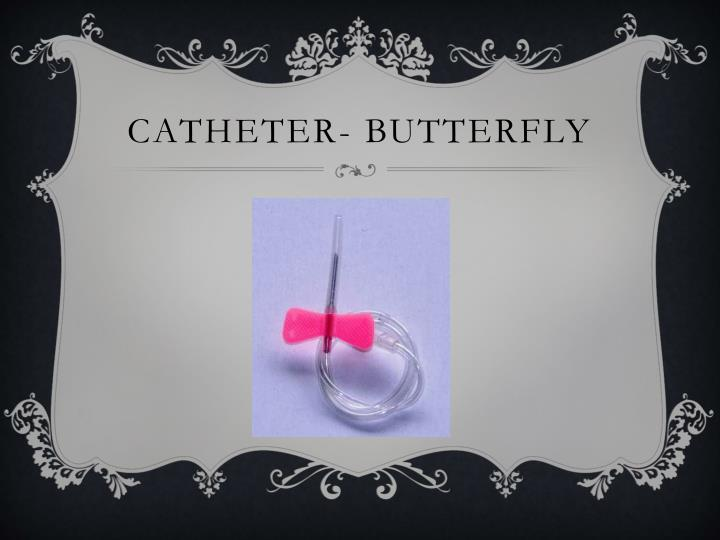 Catheter- butterfly