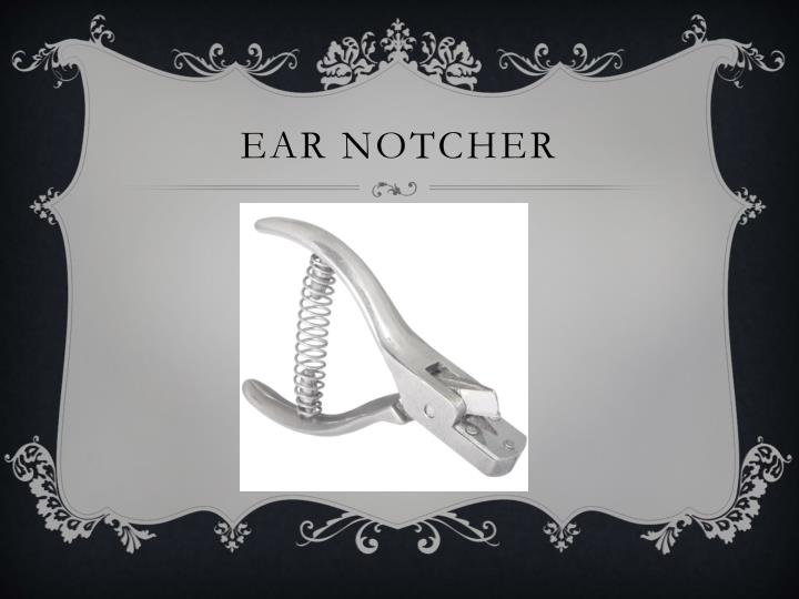 Ear notcher