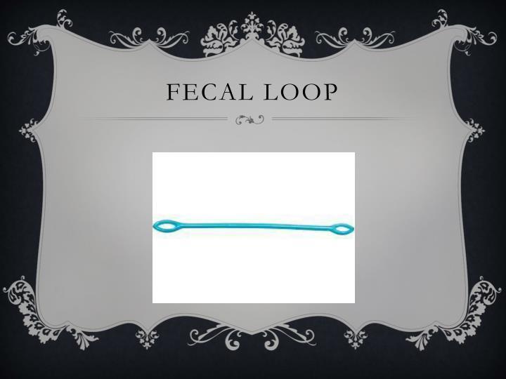 Fecal loop