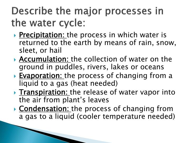 Describe the major processes in the water cycle:
