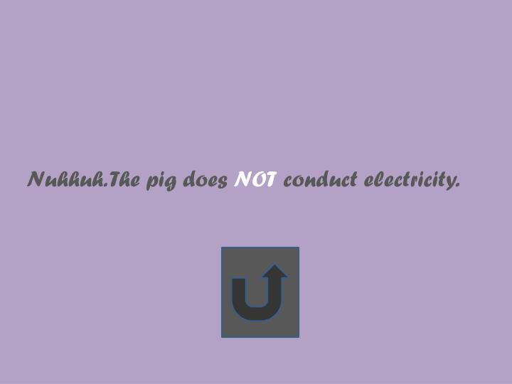 Nuhhuh. The pig does