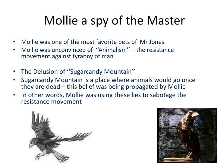 Mollie a spy of the Master