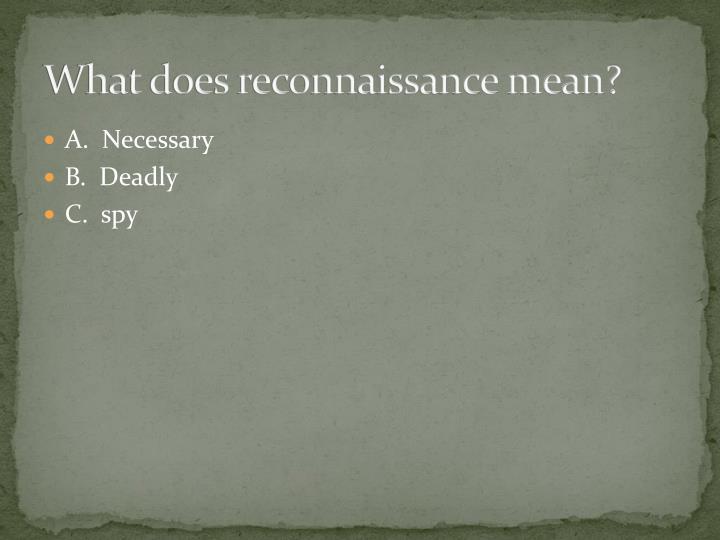 What does reconnaissance mean?