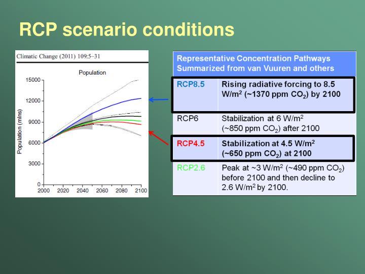 RCP scenario conditions