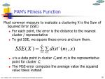 pam s fitness function