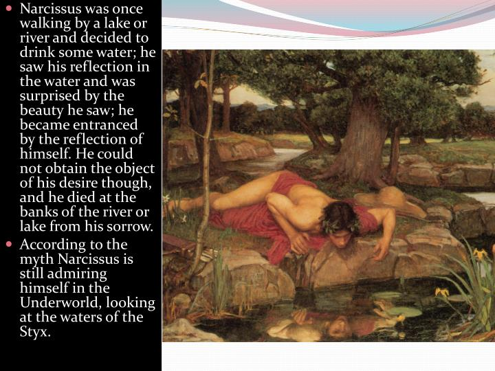 Narcissus was once walking by a lake or river and decided to drink some water; he saw his reflection in the water and was surprised by the beauty he saw; he became entranced by the reflection of himself. He could not obtain the object of his desire though, and he died at the banks of the river or lake from his sorrow.