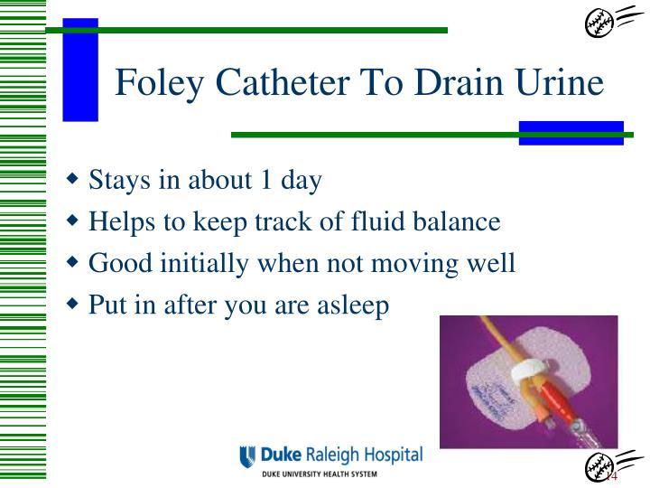 Foley Catheter To Drain Urine