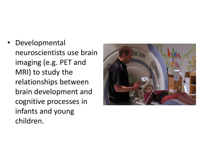 Developmental neuroscientists use brain imaging (e.g. PET and MRI) to study the relationships between brain development and cognitive processes in infants and young children.
