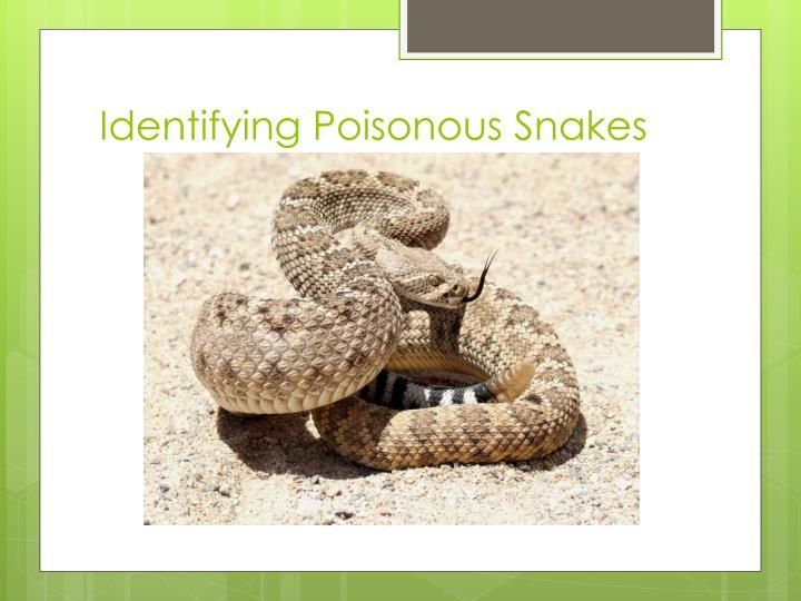 Identifying Poisonous Snakes