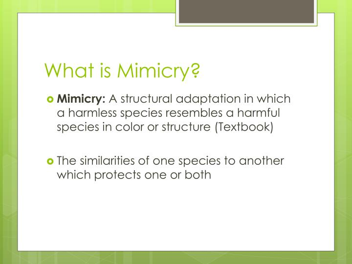 What is Mimicry?