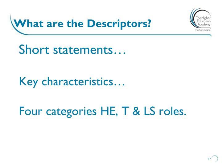 What are the Descriptors?
