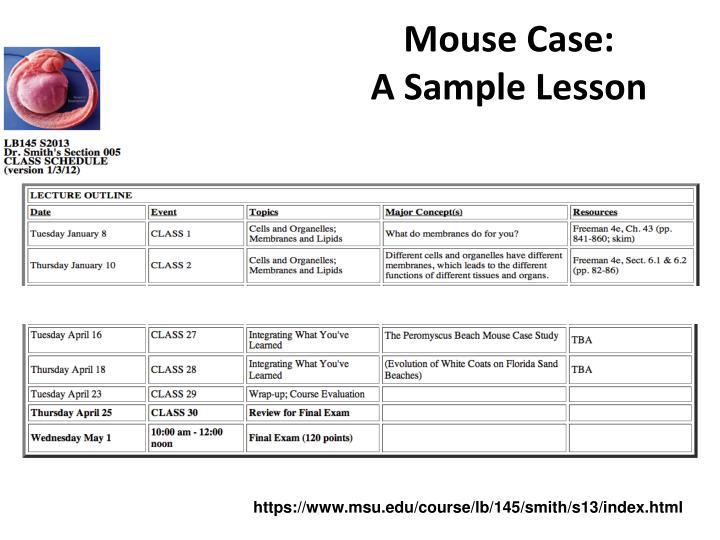 Mouse Case: