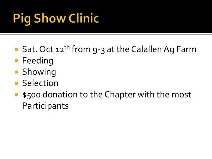 Pig Show Clinic