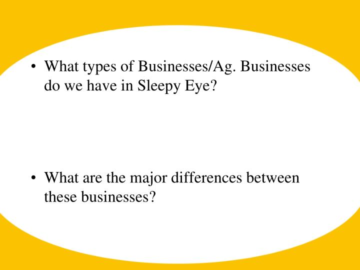 What types of Businesses/Ag. Businesses do we have in Sleepy Eye?
