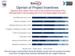 opinion of project incentives