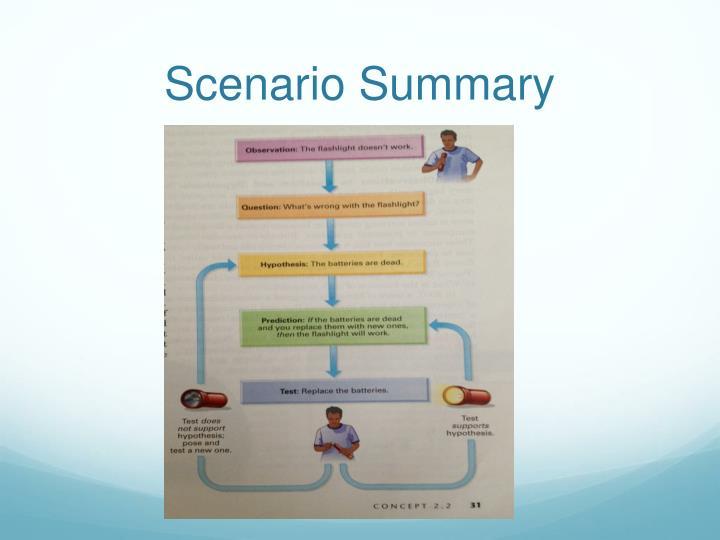 Scenario Summary
