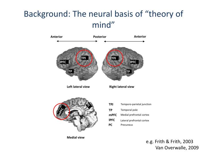 "Background: The neural basis of ""theory of mind"""