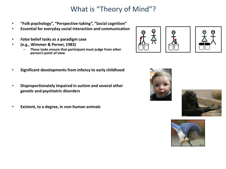 "What is ""Theory of Mind""?"