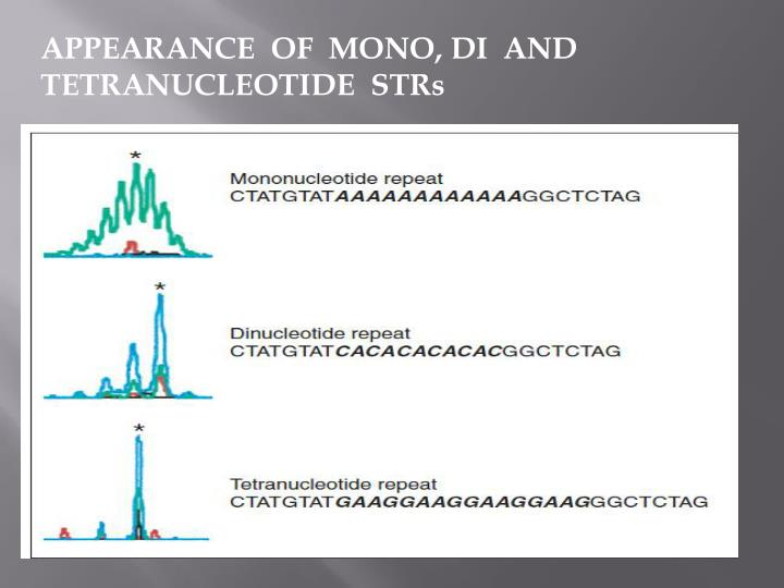 APPEARANCE  OF  MONO, DI  AND TETRANUCLEOTIDE  STRs