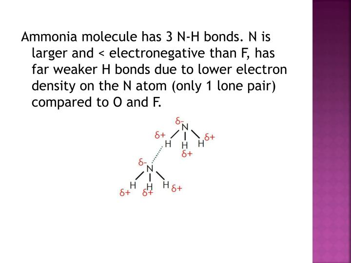 Ammonia molecule has 3 N-H bonds. N is larger and < electronegative than F, has far weaker H bonds due to lower electron density on the N atom (only 1 lone pair) compared to O and F.