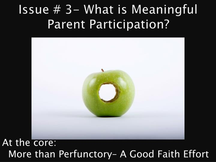 Issue # 3- What is Meaningful Parent Participation?