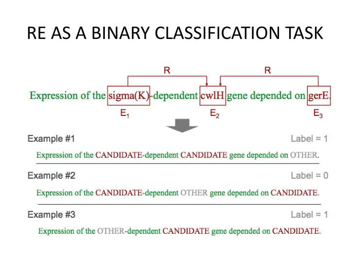 RE AS A BINARY CLASSIFICATION TASK