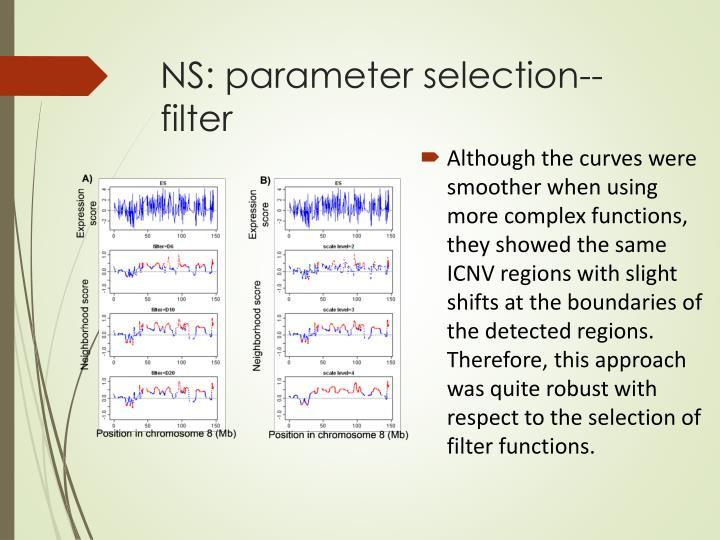 NS: parameter selection--filter