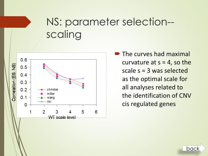 NS: parameter selection--scaling