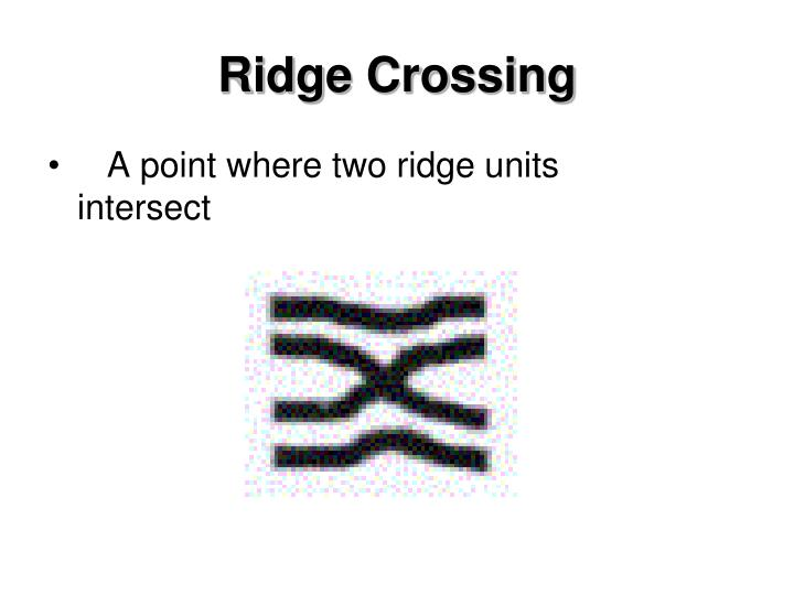 Ridge Crossing