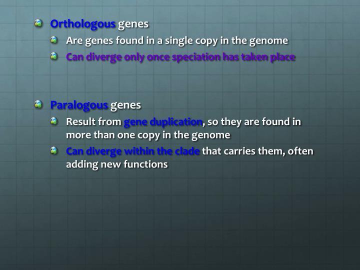 Orthologous