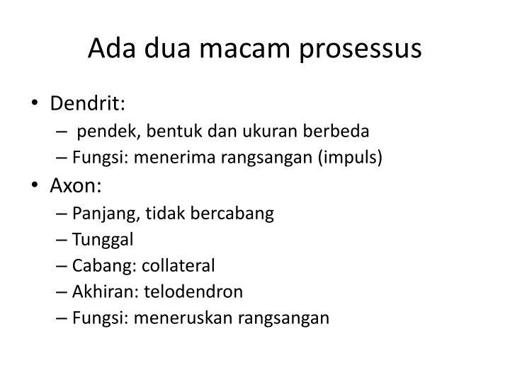 Ada dua macam prosessus