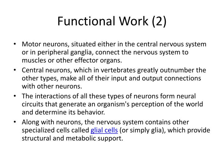Functional Work (2)