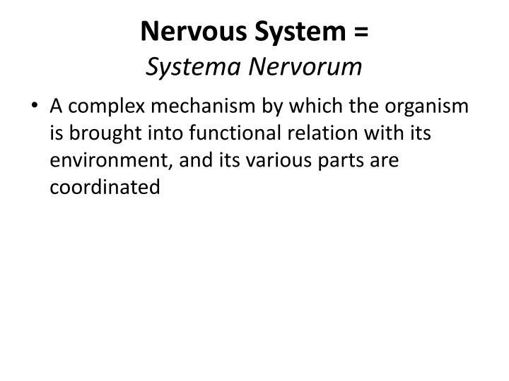 Nervous System =