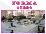 norma 166