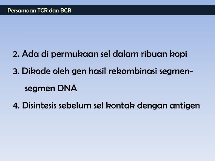 Persamaan TCR dan BCR