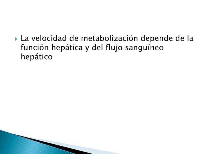 La velocidad de metabolización depende de la función hepática y del flujo