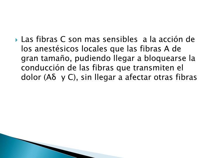 Las fibras C son mas sensibles  a la acción de los anestésicos locales que las fibras A de gran tamaño, pudiendo llegar a bloquearse la conducción de las fibras que transmiten el dolor (A