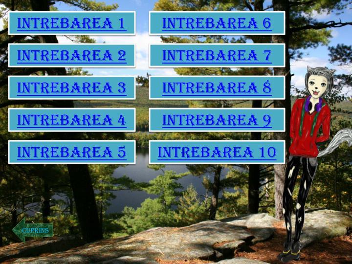 INTREBAREA 1