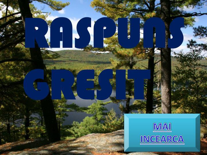 RASPUNS GRESIT
