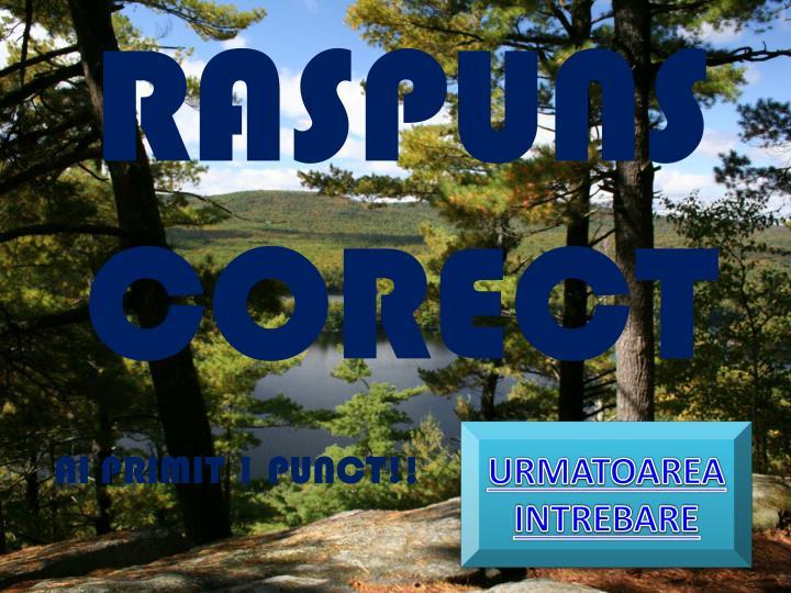 RASPUNS CORECT